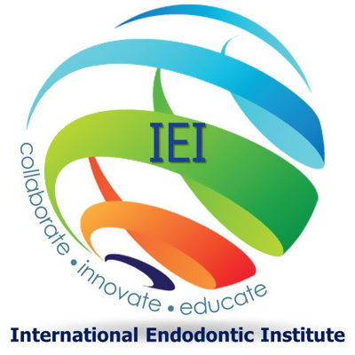 Logo Iei Institute 400×400